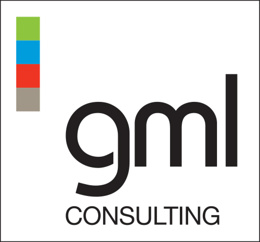 GML Consulting Case Study